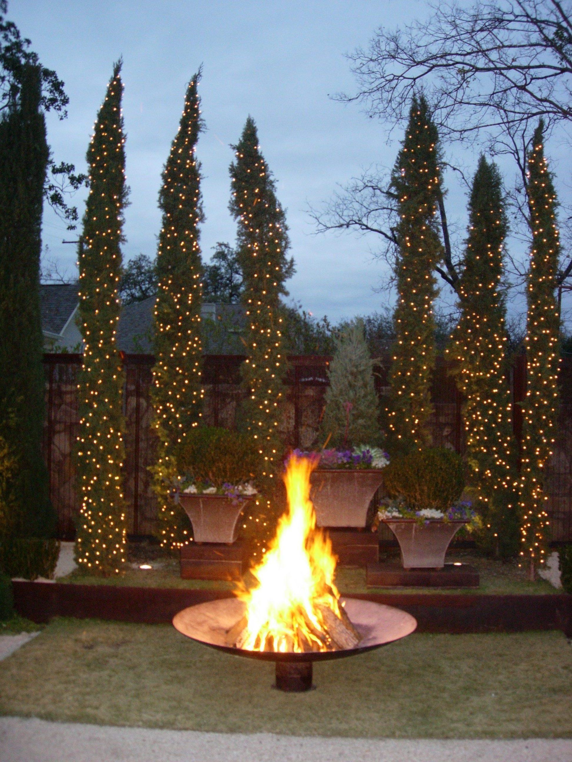 project-pemberton-heihgts-shivers-dish-fire-garden-italian-cypress.JPG