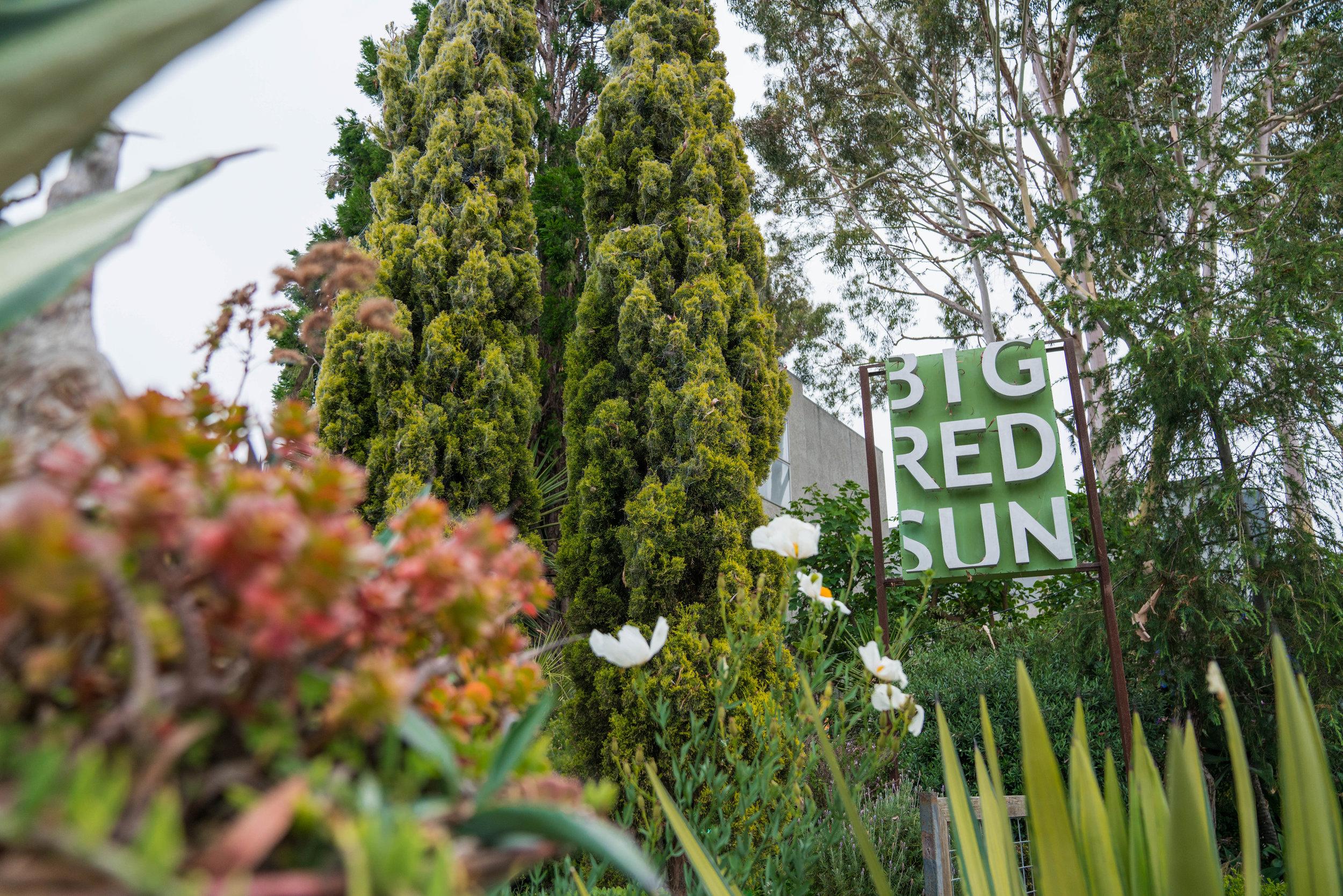 Big-Red-Sun-LA-Rose-Ave-Shop-Shelley-Neuman-02194.jpg