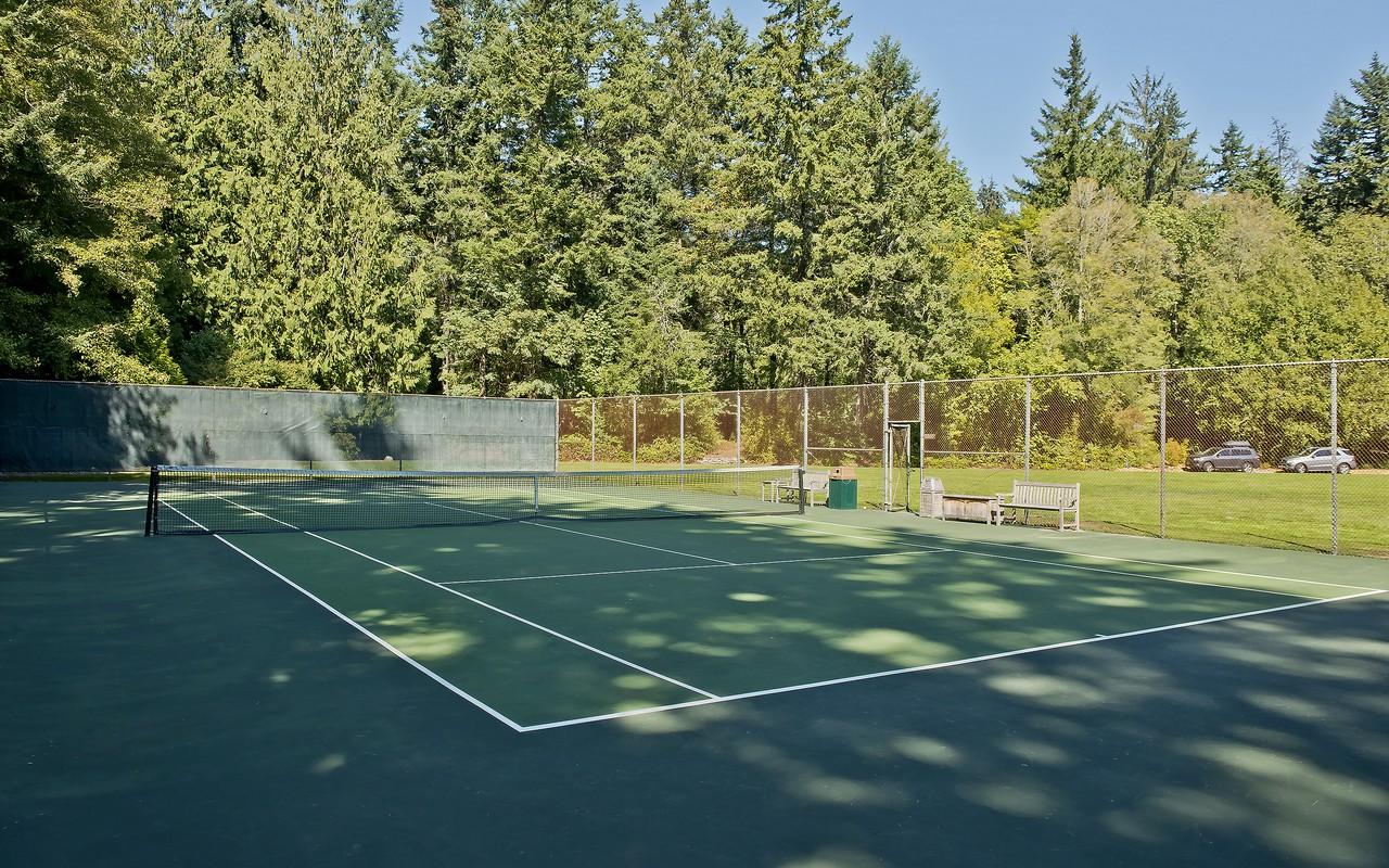 tennis courts 1.jpg