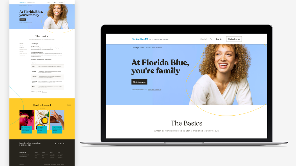 the-basics-florida-blue-portfolio.png