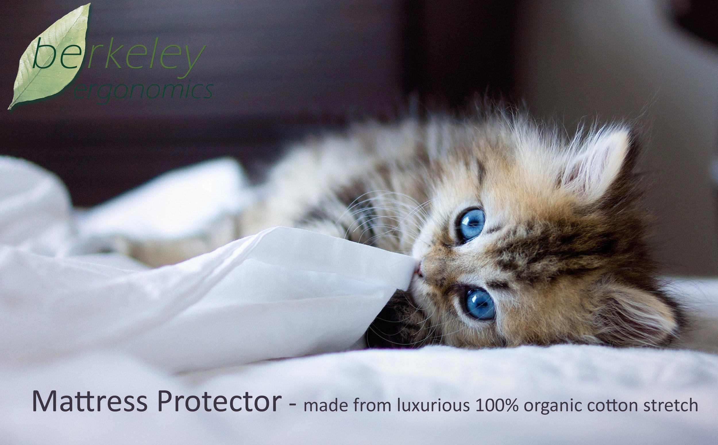 MATTRESS PROTECTOR - PROTECT YOUR INVESTMENT