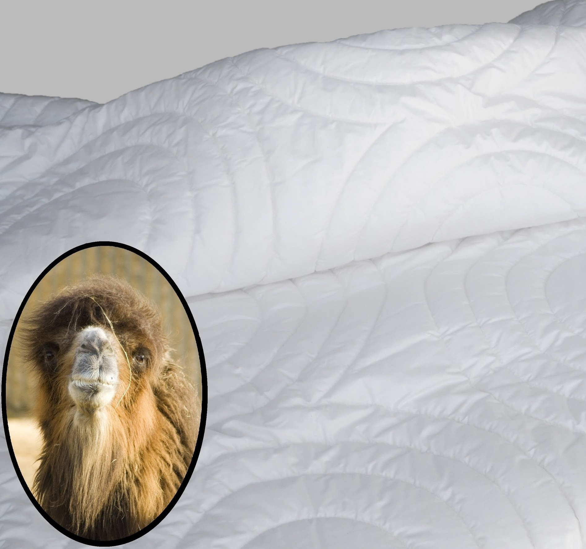 Berkeley Ergonomic Luxury Camel Hair Duvet -
