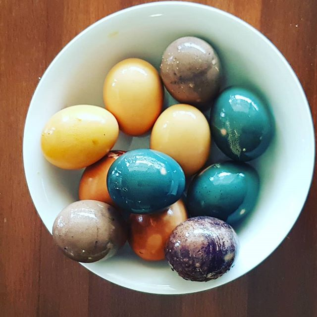 Part 1 of natural Easter egg dyeing experiment! Going to try with kale and cayenne pepper next. The most impressive color is the blue from the red cabbage! But I think the colors are brighter if you use white eggs, not brown!