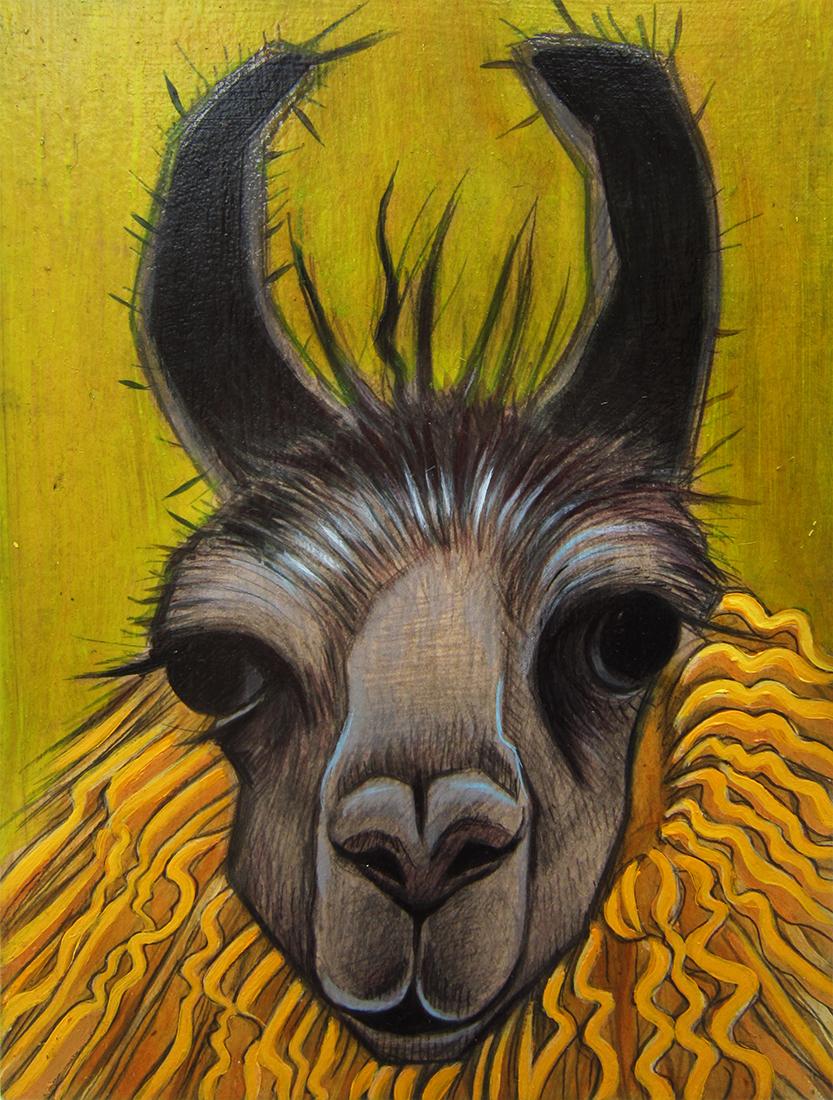 yellowalpaca_web.jpg