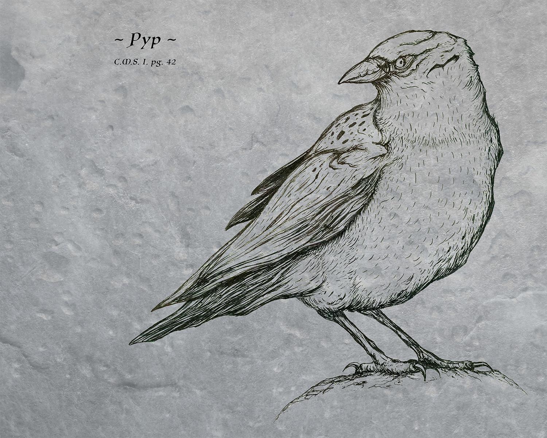 pg42.jpg