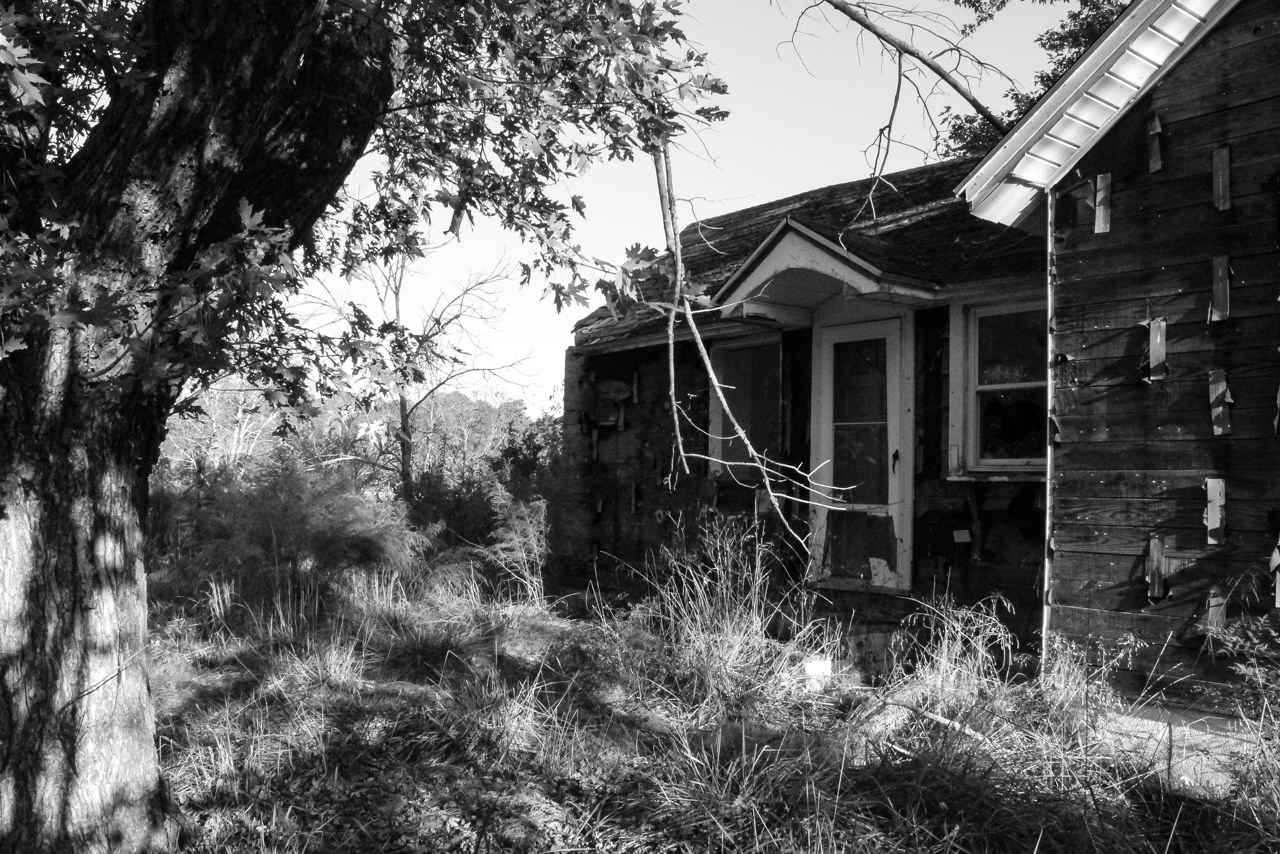 Reese Rickards House