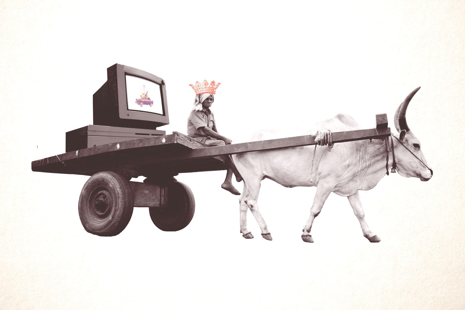 Bullock-Art.jpg