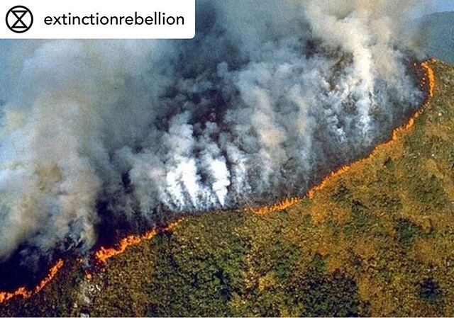 The Amazon's raging forest fires are so extreme that the smoke can be seen from space. The fires have been burning for three weeks.  The Amazon rain forest covers an area of 6million km2 and spreads over nine countries.  The Amazon homes a fifth of all of the world's species, including 15,000 types of tree. There are roughly 300 billion trees in the Amazon in total.  Studies suggest that the Amazon absorbs around 2.2 billion tons of carbon dioxide a year, playing a crucial role in stabilising our climate.  Indigenous groups living in the Amazon for thousands of years have been resisting the destruction of their ancestral home, often at the cost of their own lives. Their wisdom has been ignored by many, including Brazilian President, Jair Bolsanaro, who is prioritising Amazon resource extraction for economic gain.  We must #TellTheTruth. It's time to #ActNow and take to the streets to stop the destruction of our precious ecosystems. On Friday 23rd August at 11am, we will gather outside our local Brazilian Embassies to demand urgent action against the destruction of this precious eco system.  Photos: INPE & NASA  #ExtinctionRebellion #ActForAmazonia PrayForAmazonia #Amazon #SaveTheAmazon #ClimateCrisis #OurLungsAreOnFire