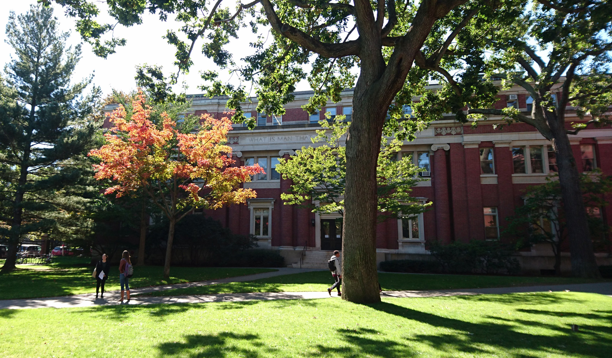 Harvard in fall.jpg