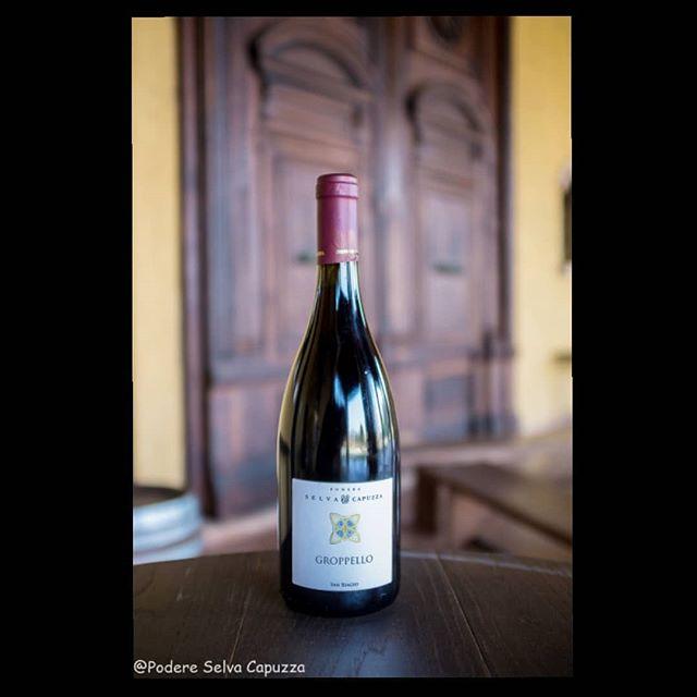 🇮🇹 Il vino perfetto per Pasquetta? Groppello San Biagio 2017, fresco e fruttato, versatile, da gustare come aperitivo o per accompagnare un tradizionale pic-nic! . 🇬🇧 The perfect wine for Easter Monday? Groppello San biagio 2017, fresh and fruity, easy, to enjoy as aperitif or with the traditional pic nic! . #selvacapuzza #winelover #desenzano #sirmione #wine #winetasting #wineoclock #easter #easteregg #eastermonday #gita #picnic #enoturismo #winetime #lagodigarda #instagarda #wineoclock #winemoments #wine #vinoitaliano #winepositive #wineinstagram #instawine #instawine