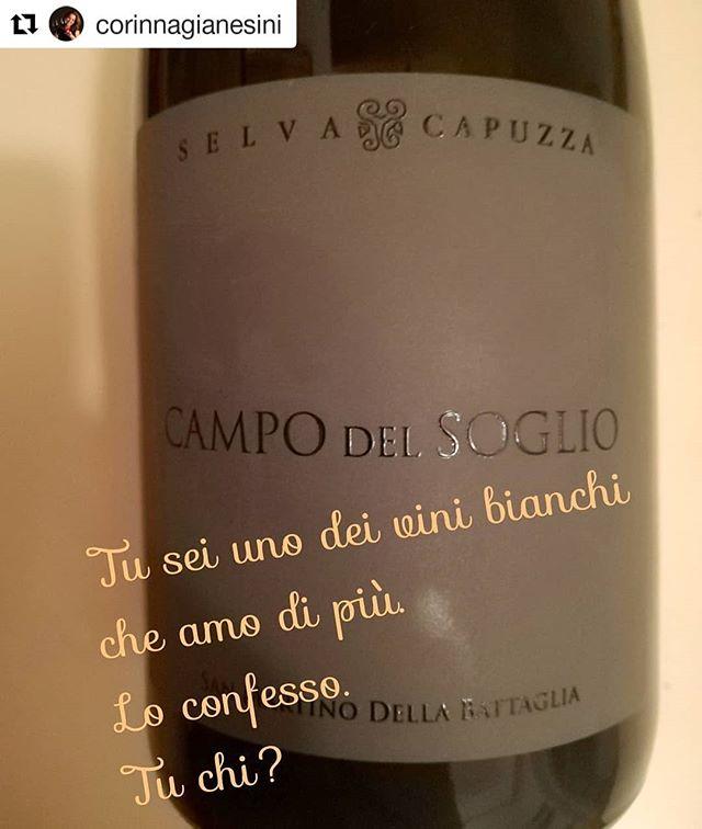 Grazie di cuore a @corinnagianesini per questa meravigliosa dichiarazione d'amore per il nostro San Martino della Battaglia! . Ti aspettiamo in cantina! . #selvacapuzza #sanmartinodellabattaglia #vinoitaliano #instawine #luganalover #ais #vino #wine #instagarda #vinobianco #tuchi #tocai #greatwine #winelife #winemoments #wine #desenzano #sirmione #instagarda