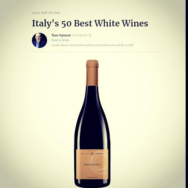 🇮🇹 Lugana Riserva Menasasso: l'unico lugana tra i migliori 50 vini bianchi d'Italia secondo Tom Hyland di Forbes! Grazie infinite per questo riconoscimento! . 🇬🇧 Lugana Riserva Menasasso: the only lugana among the best 50 Italian white wines according to Tom Hyland by Forbes! We are so grateful for this recognition! . #bestwine #luganalover #lugana #winelover #desenzano #sirmione #wine #winetasting #wineoclock #winemoments #forbes #italianwhitewine #italianwine #grazie #wineexcellence #wineguide #winelife #wine #вино #ワイン #madeinitaly #ourwine #whitewine #grateful #hardwork #sustainable #vines