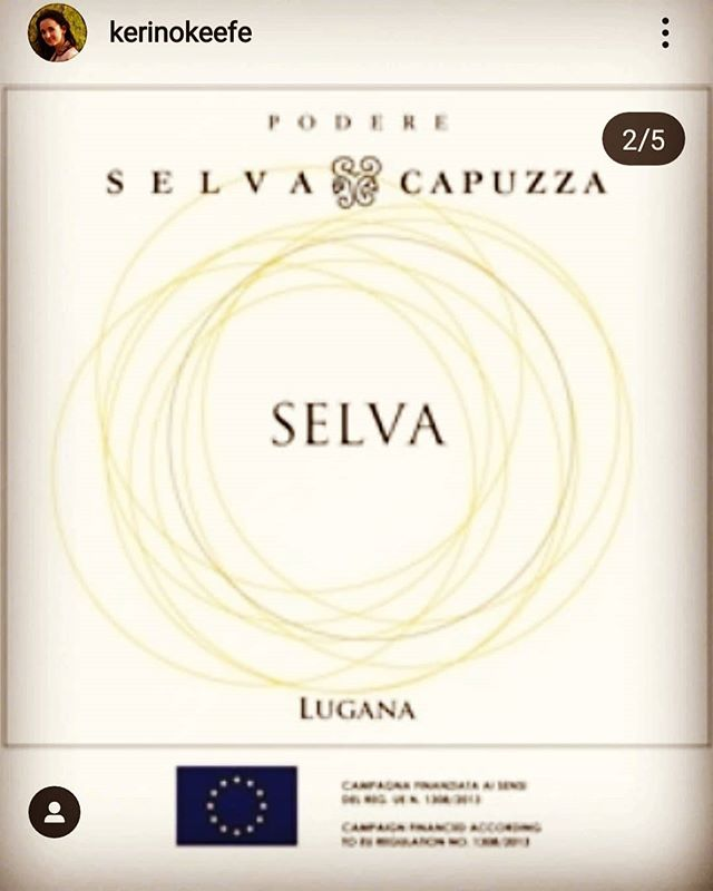 🇮🇹 E oggi ringraziamo @kerinokeefe per aver apprezzato il nostro Lugana Selva assegnandogli 92 punti! . 🇬🇧 Today we thank @kerinokeefe  @wineenthusiast for the 92 points given to our #lugana Selva! . #cheers #luganalover #trustyourtaste #wineenthusiast #wineguide #winegram #winelover #desenzano #sirmione #wine #winetasting #wineoclock #winemoments #instawine #instagarda #whitewine #vinibianchi #eccellenze #wine #selvacapuzza