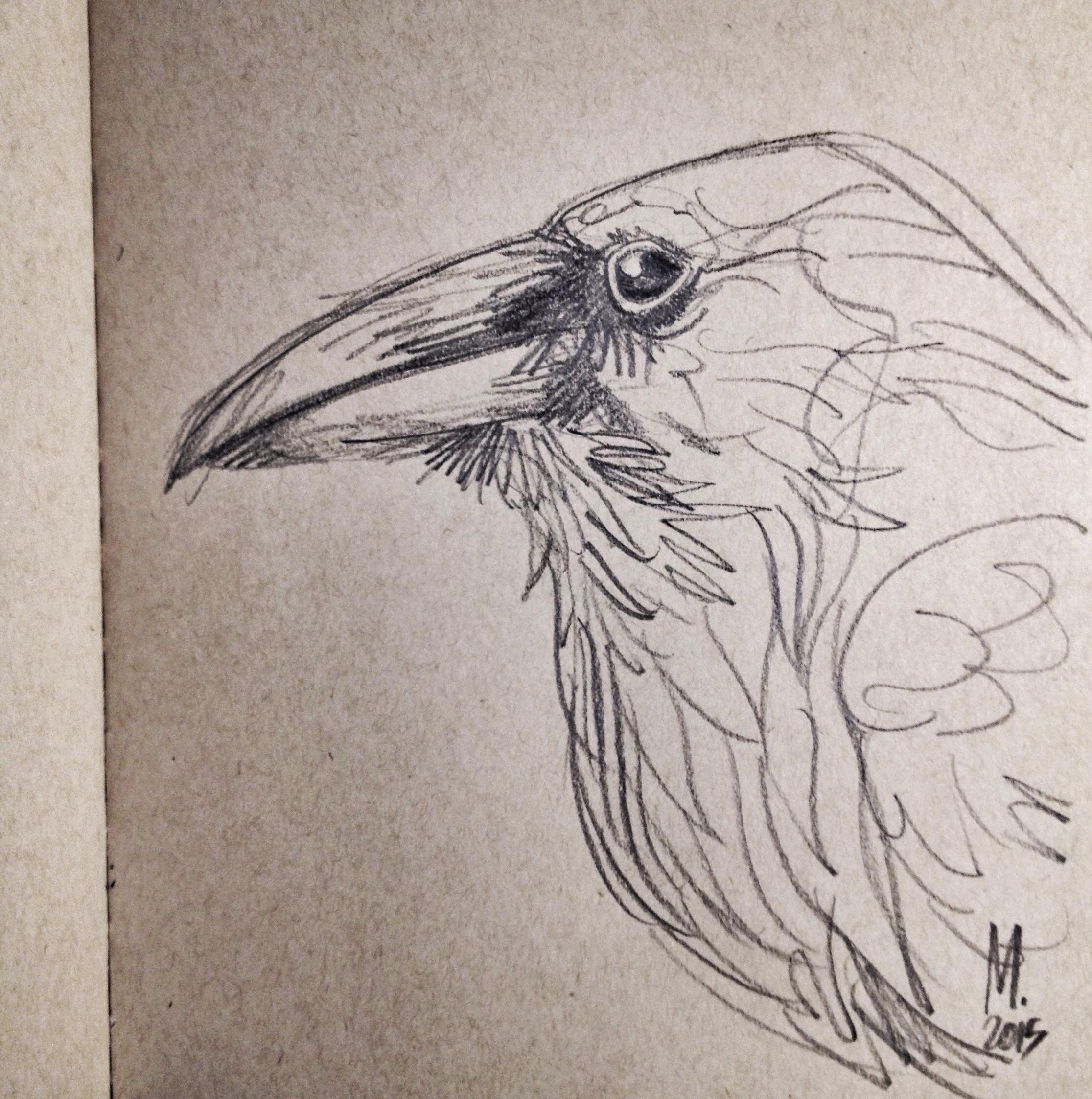 Blackbird with blackwing.