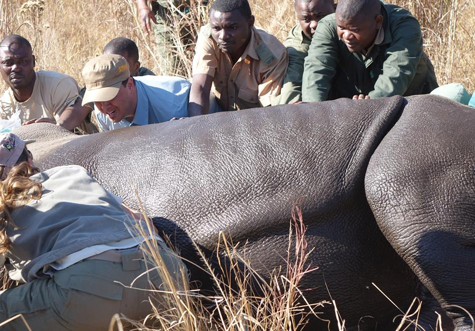 Working in Zimbabwe with the Aware Trust, Rhino Ops