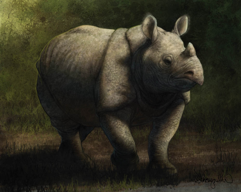 """Sunda Rhinocerous"" by  Don Seegmiller  (digital)"