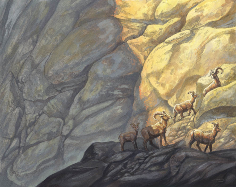 """In The Shadow of Sierras"" by  Brynn Metheney  (pencil and gouache)"