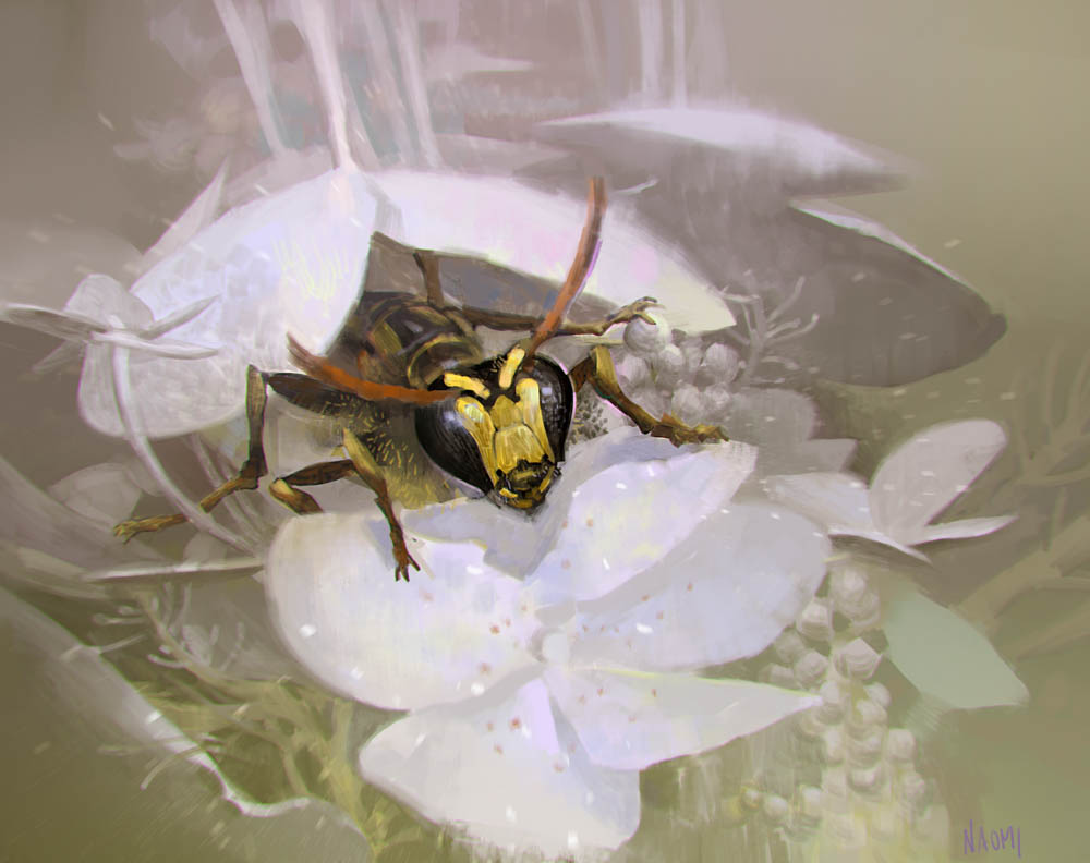 """""""Yellow faced bee"""" by  Naomi Baker  (digital)"""