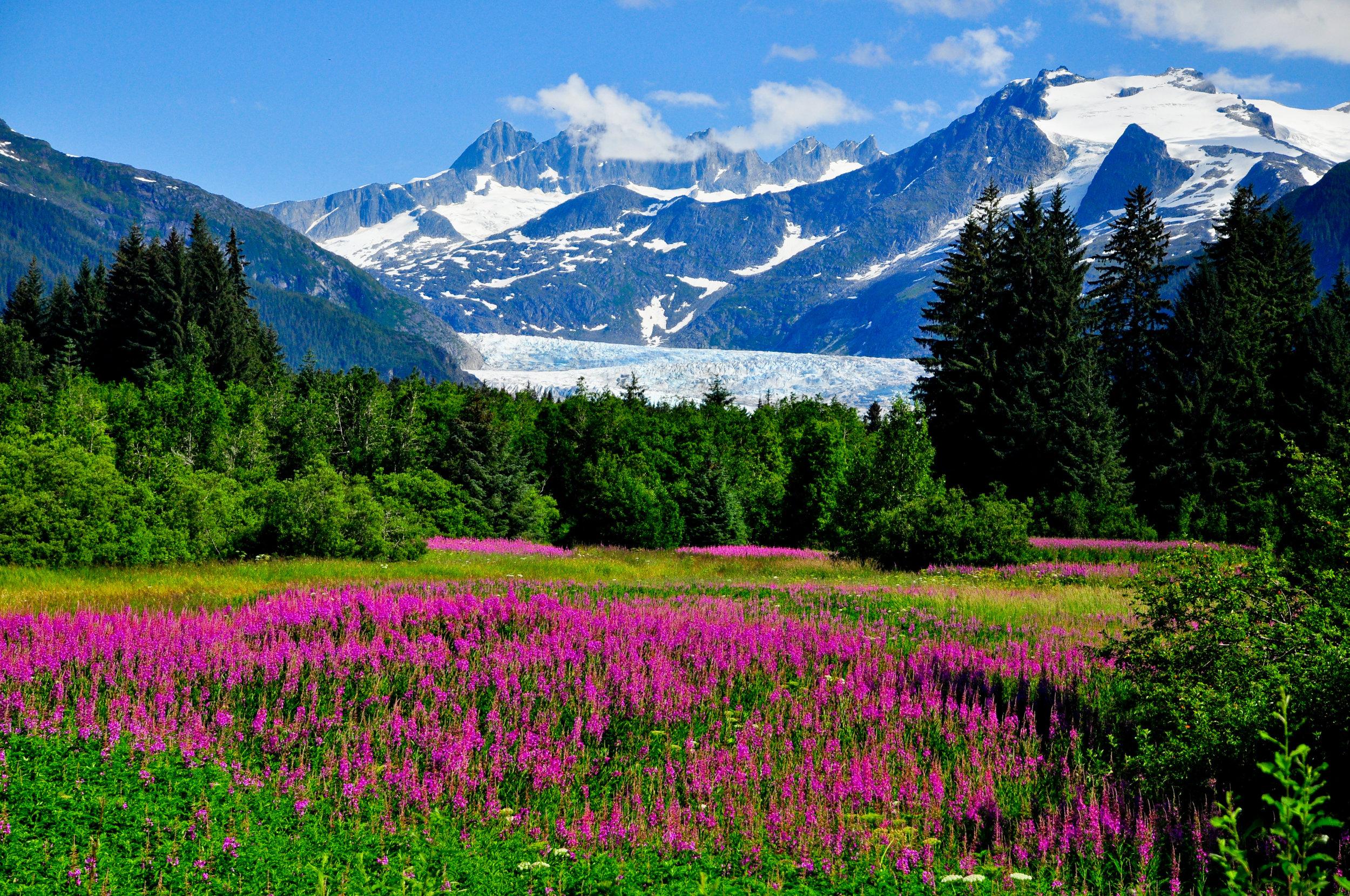 Medenhall Glacier Outlook, Juneau, Alaska