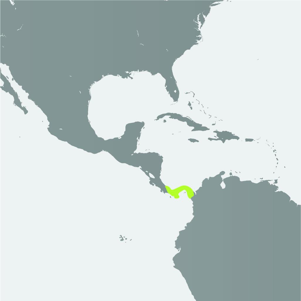 Map__Panamanian Golden Frog_1.jpg