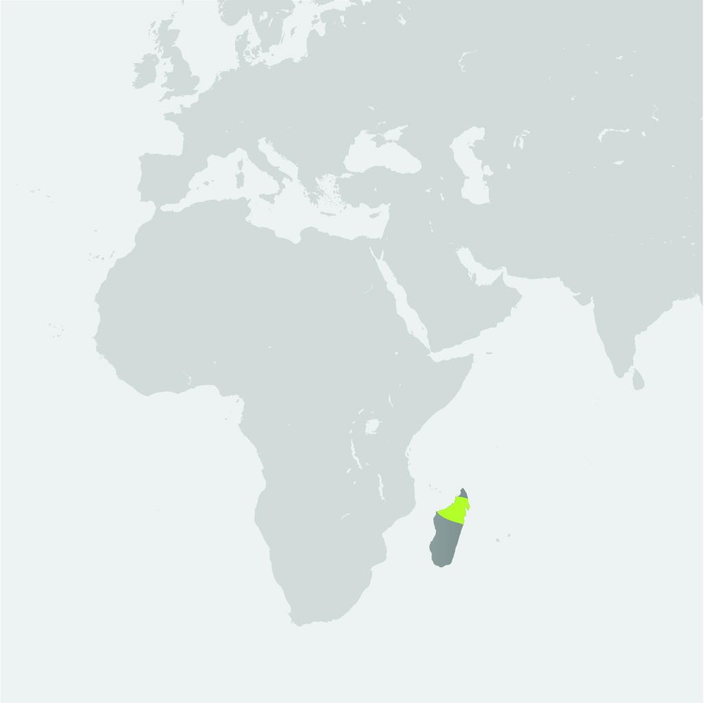 Map__Northern Lemur_Okapi.jpg