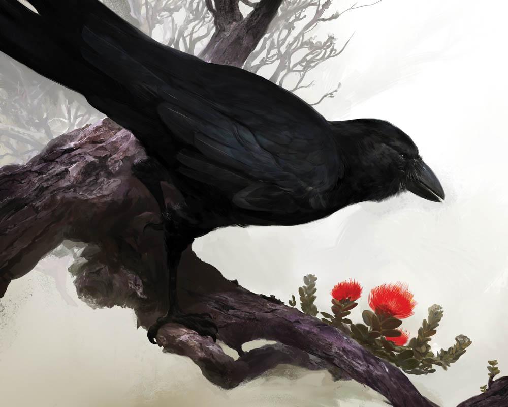 """""""Alala (Hawaiin Crow)"""""""