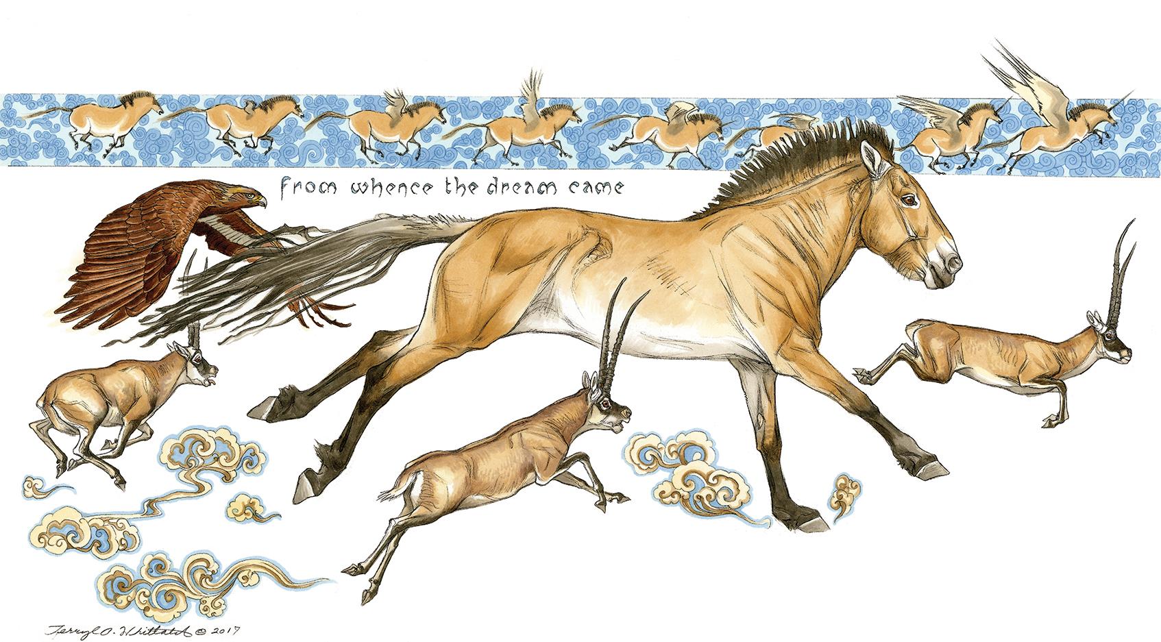 """""""The Mongolian Wild Horse (Przewalski's Wild Horse)"""""""