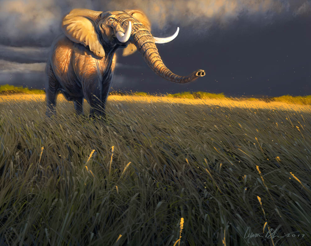 """"""" Something in the Air (African Savanna Elephant)"""""""