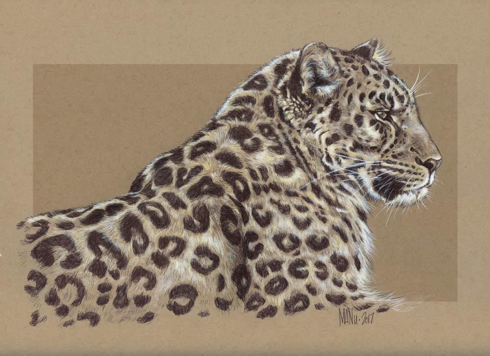 """""""Amur Leopard"""""""