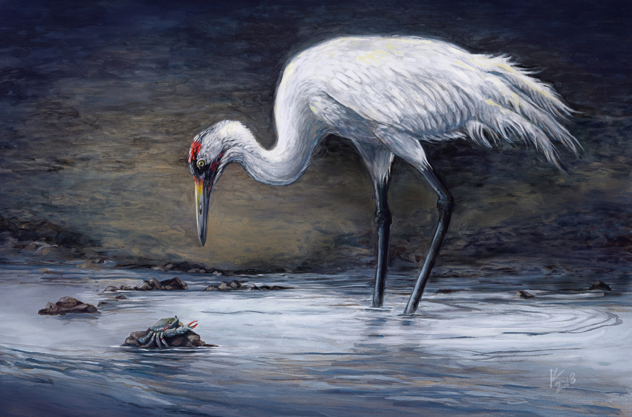 """Early Morning Hunt (Whooping Crane)"""