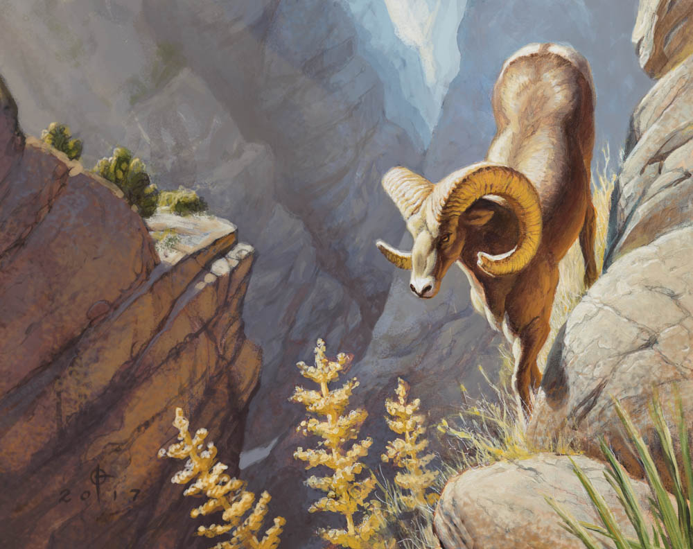 """High Trails (Desert Bighorn)"""
