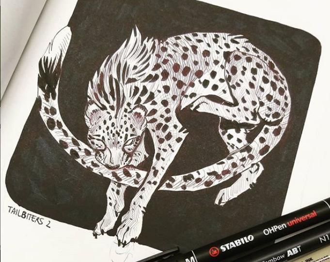 13-cheetah-fulemy.png