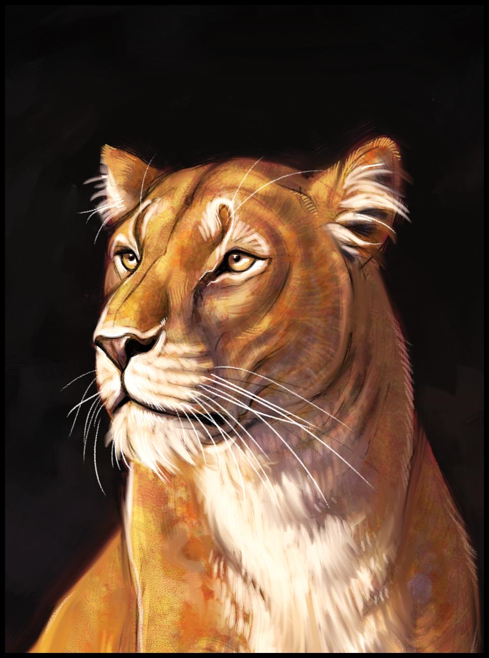 14-lion-pip-abraham.png