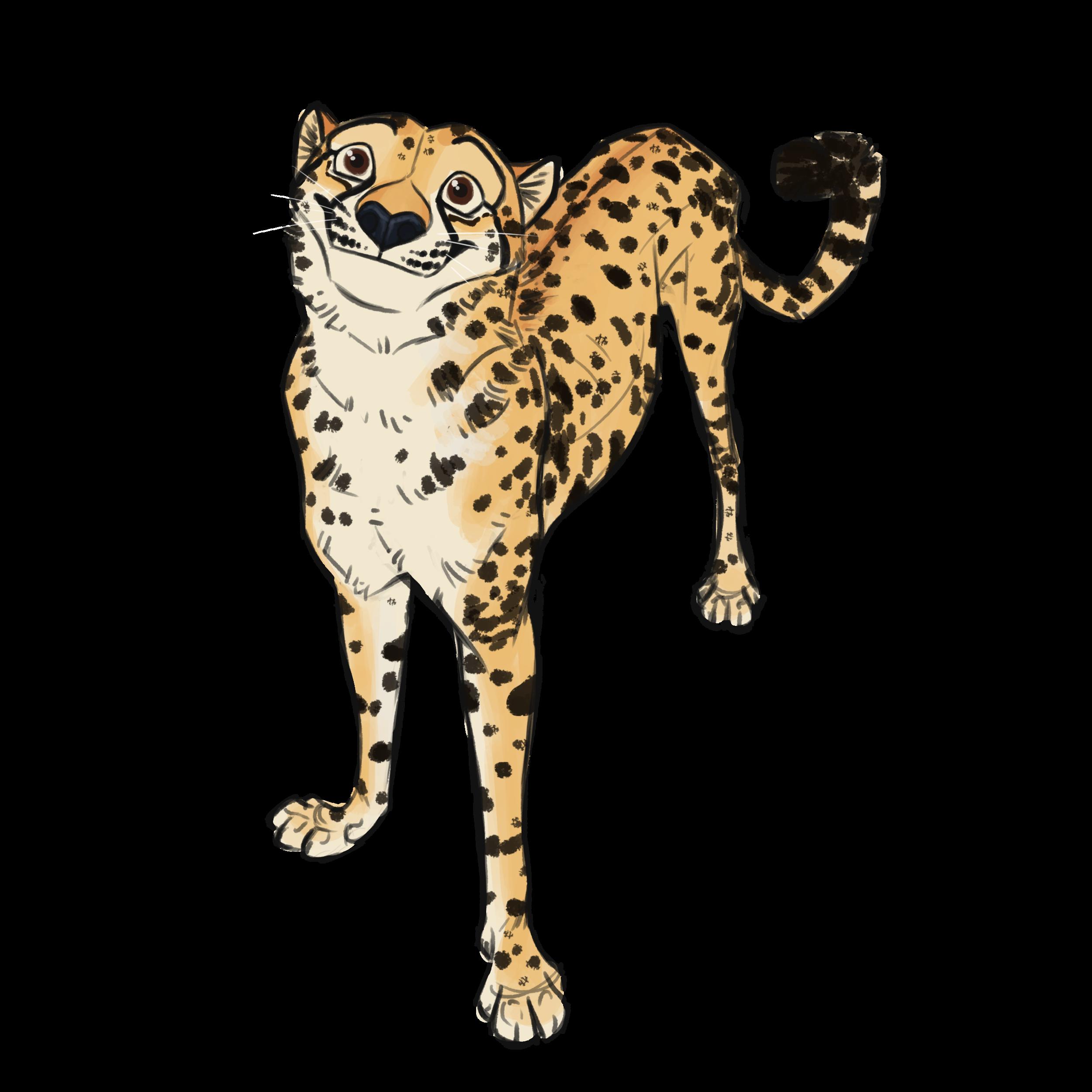 cheetah-tori-maier.png
