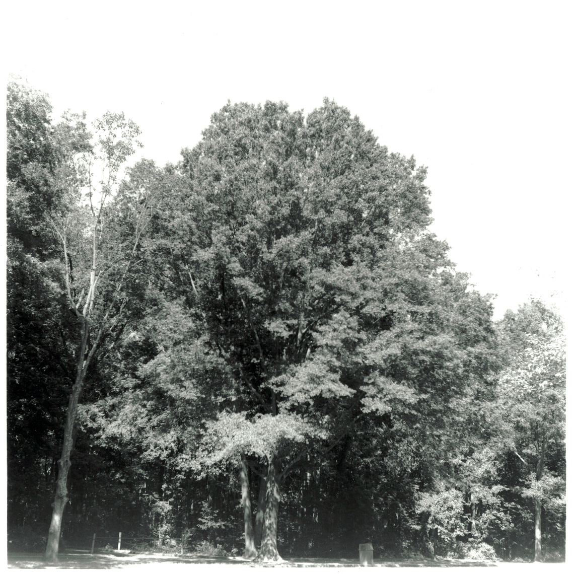 Fort Hunt Park, VA