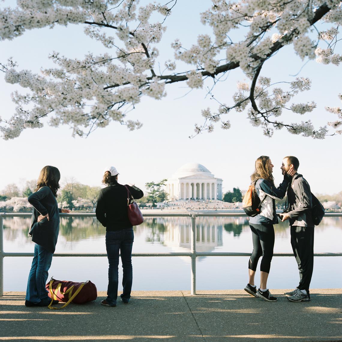 Thomas Jefferson Memorial, 2015 #1