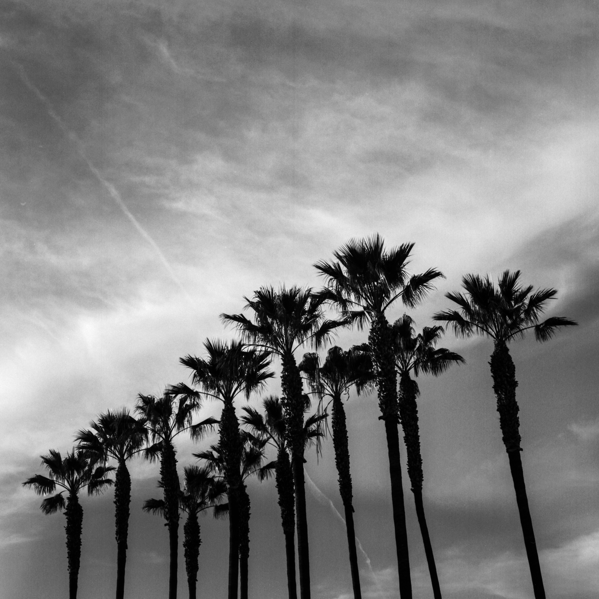 Goodbye LA (another ode de Ed Ruscha?), Los Angeles, CA, 2016