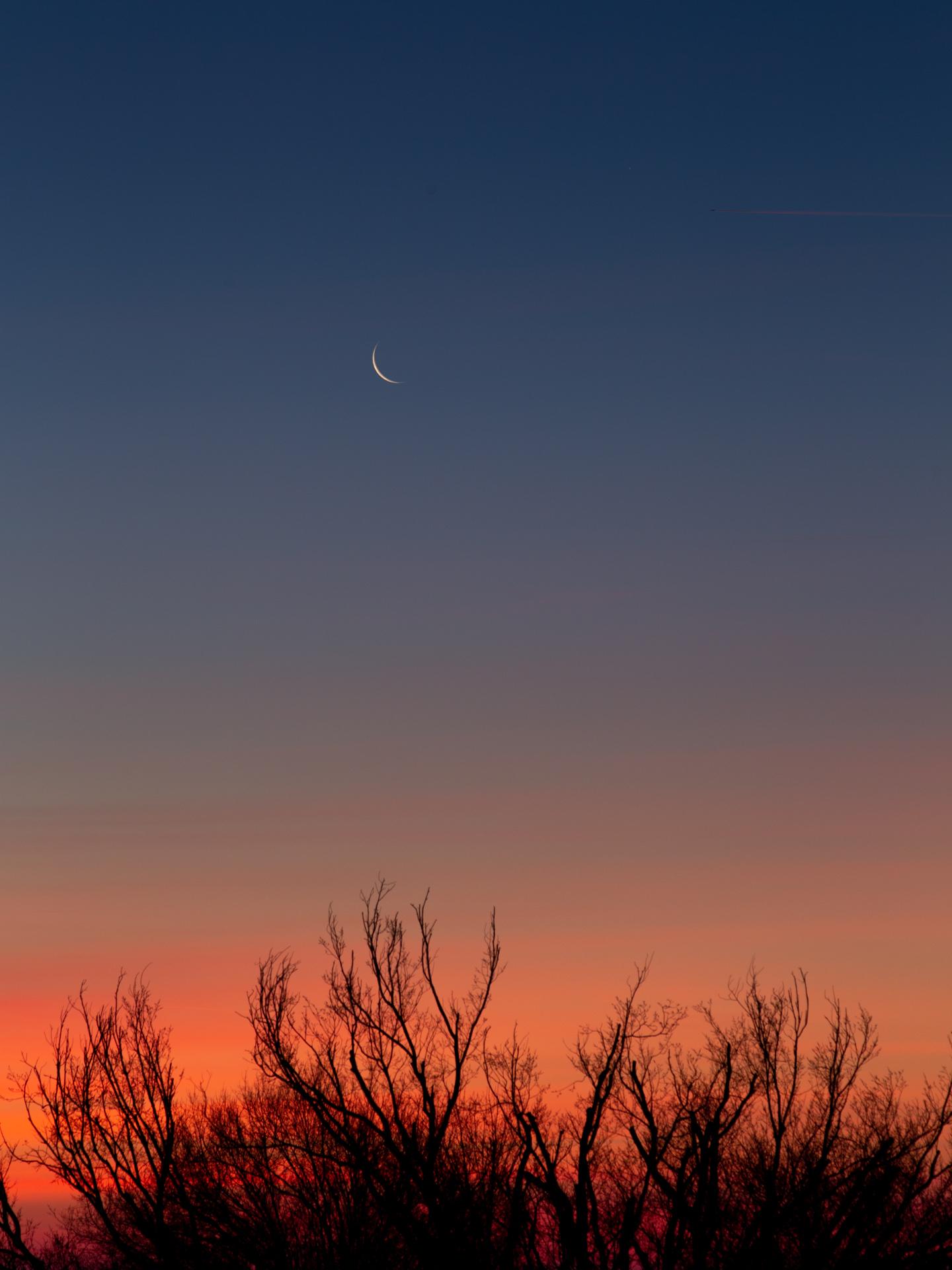Waning Crescent Moon Rise | 20190202 0657 E:38.96x77.00@84m