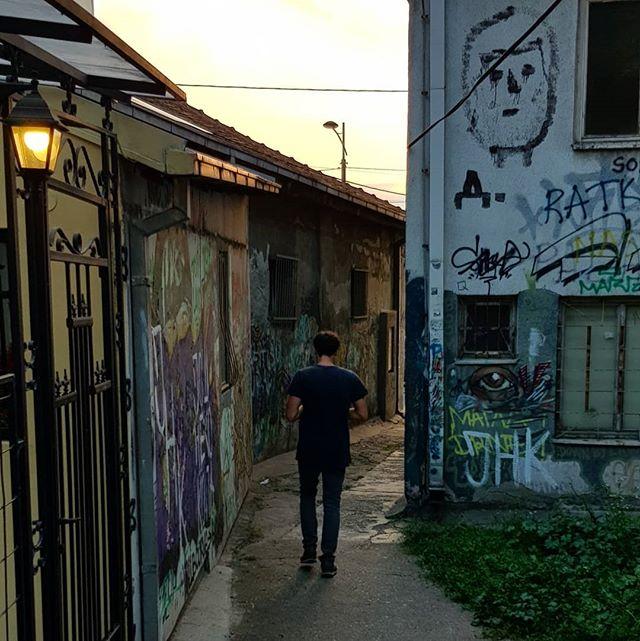 Art on the street.🧡🦄 #belgrade #citylife #liveloveexplore