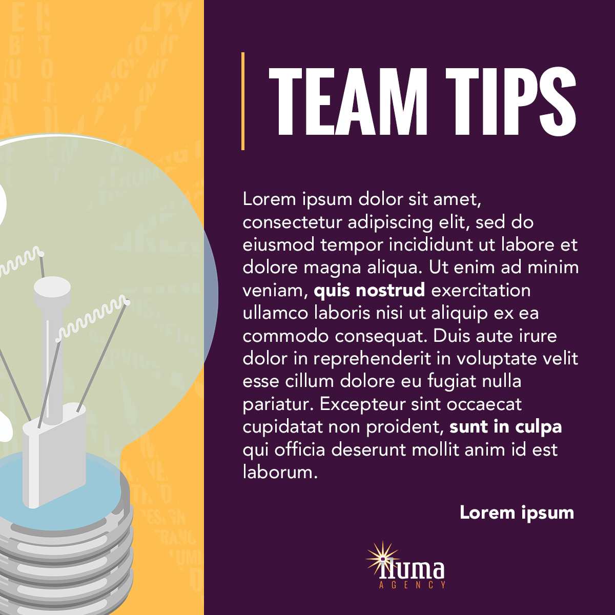 iA - Team Tip_Static.jpg
