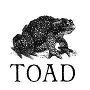 toad cambridge.jpg