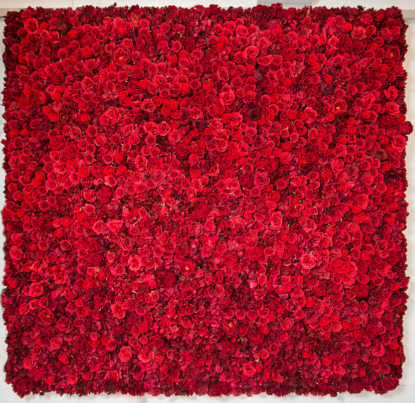 red_LargeWalls_091.jpg