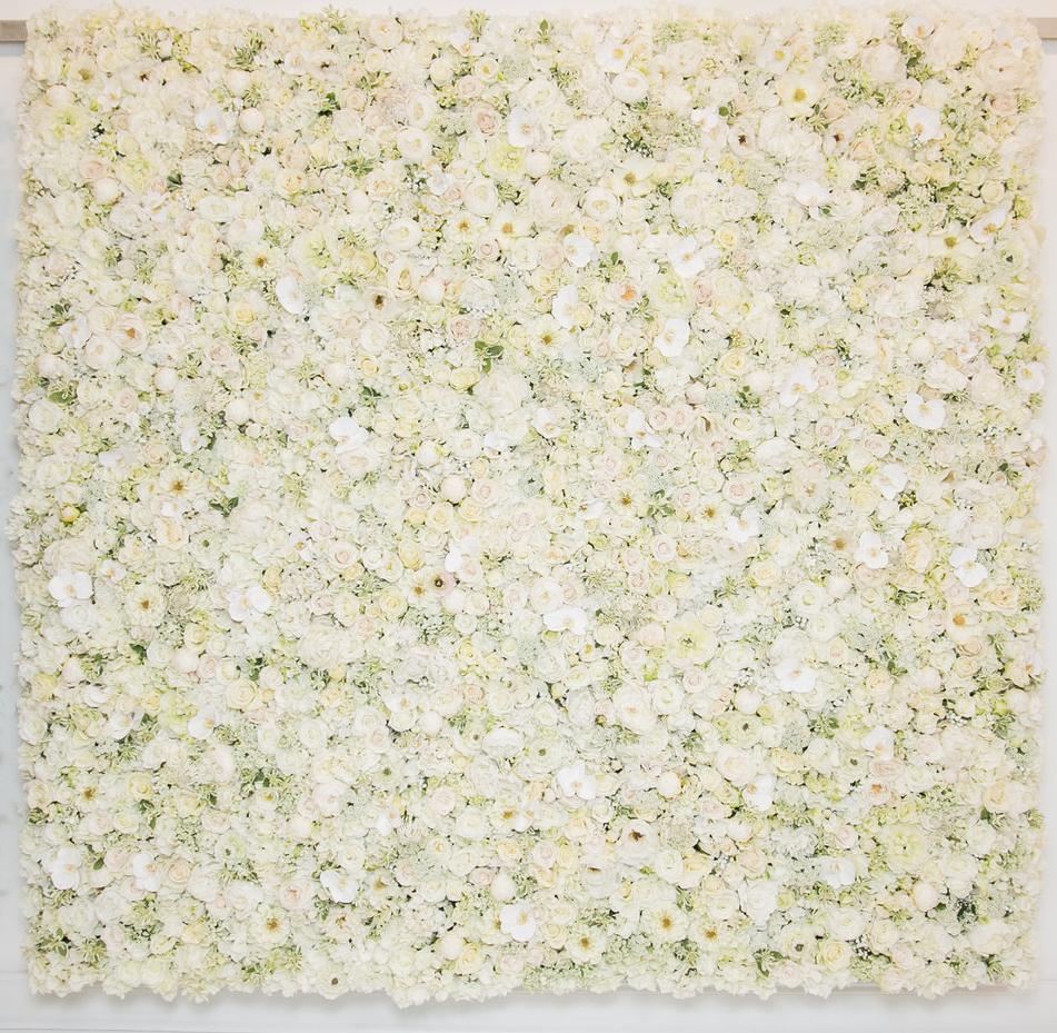 white_LargeWalls_033.jpg