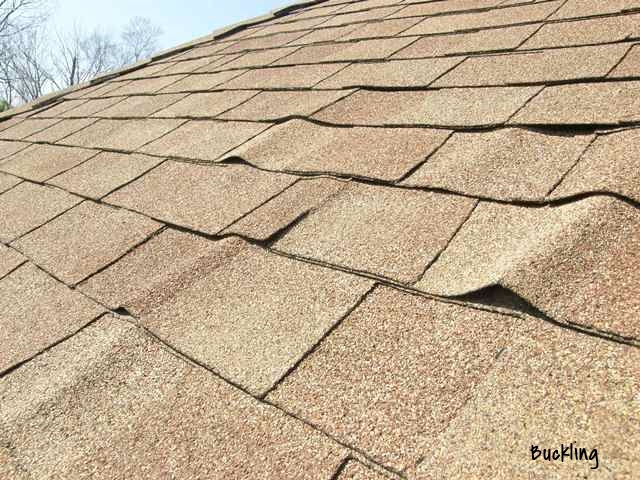 Buckled Shingles