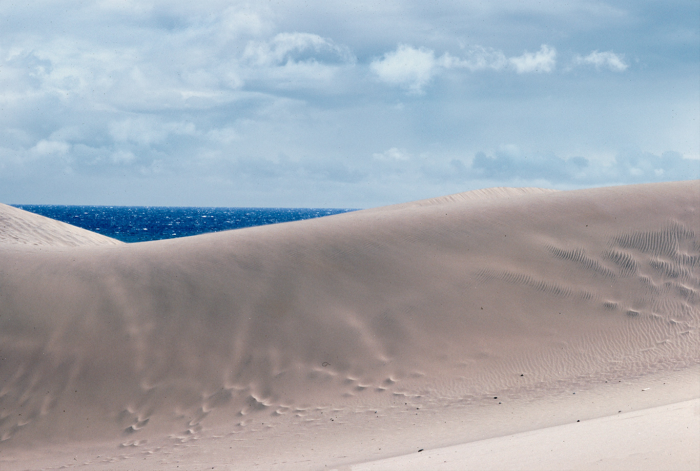 canary-with-dune-and-sea-copy.jpg