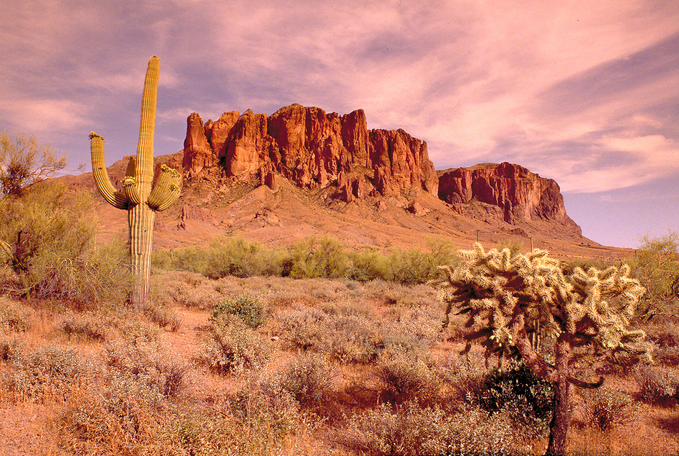SUPERSTITION-MOUNTAIN-copy.jpg