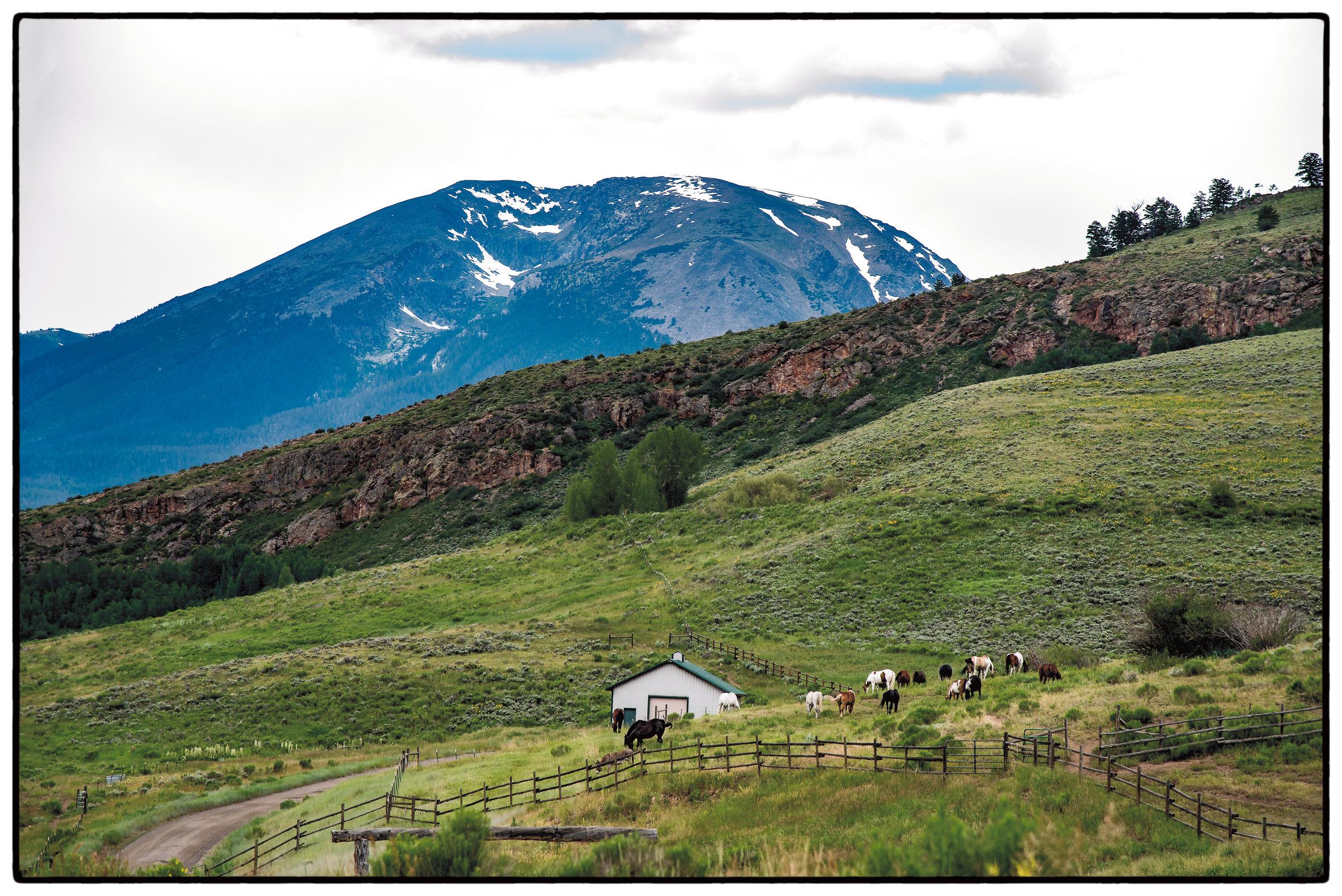 Colorado_6231.jpg