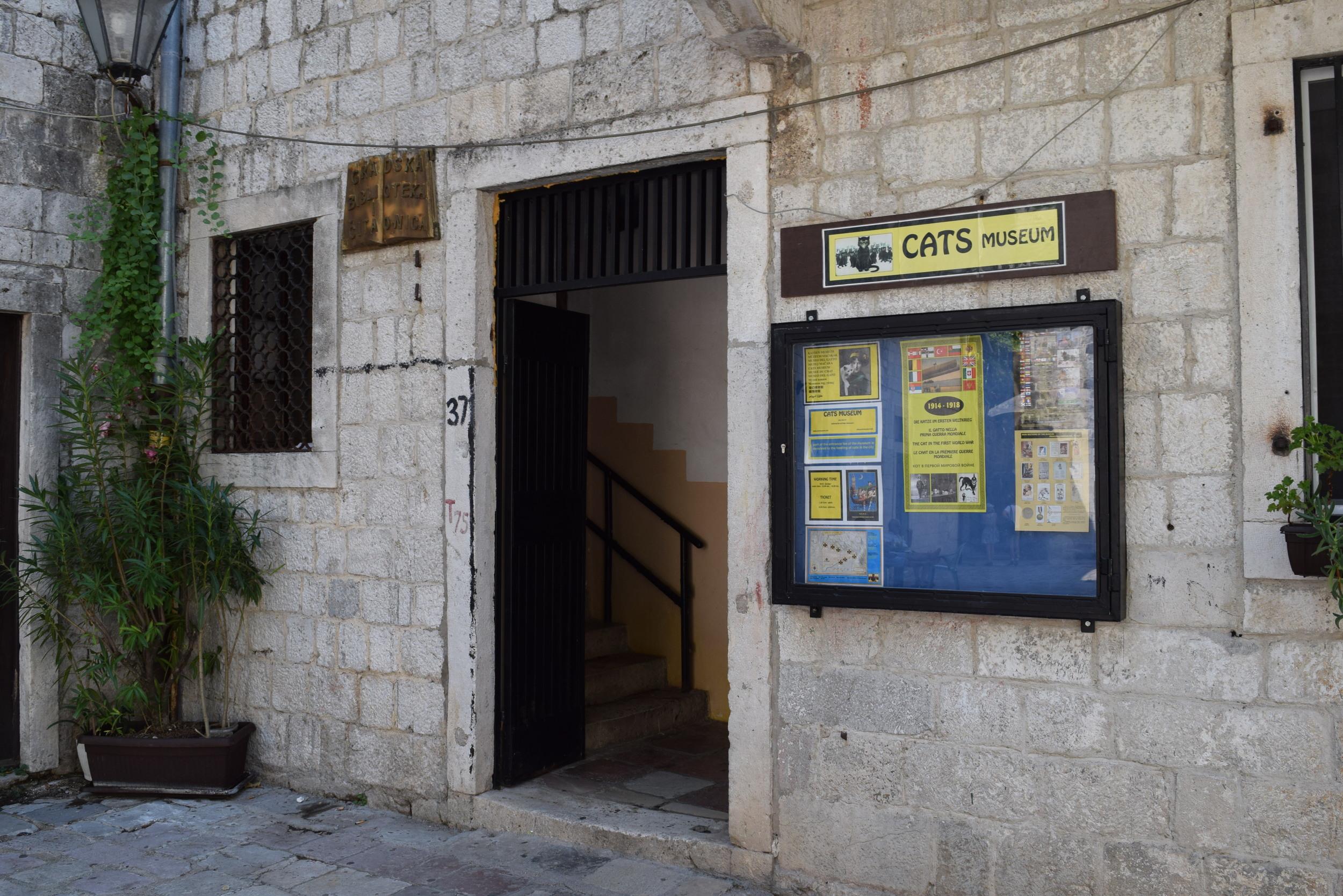 Kotor's Cats Museum