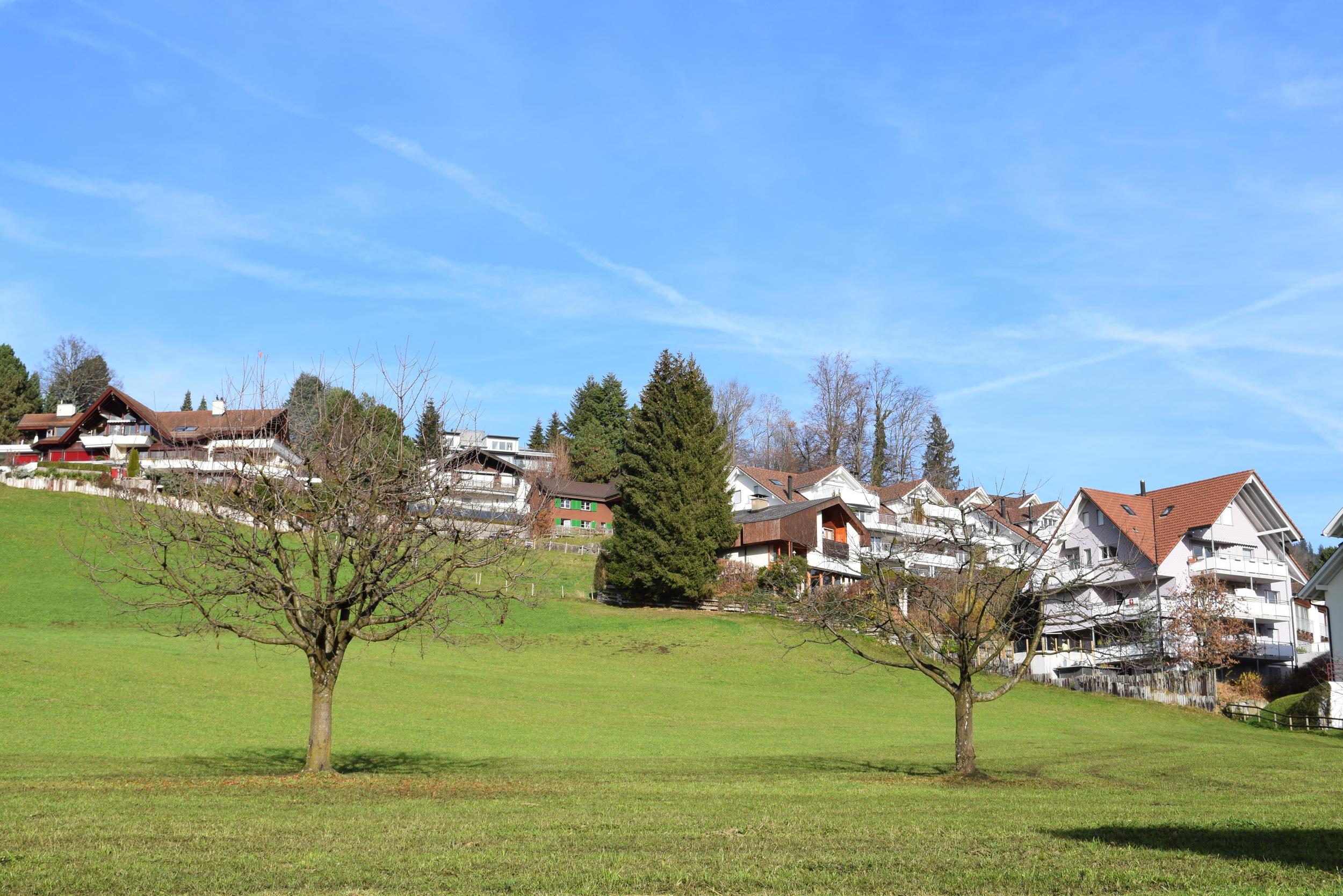 Oberägeri: Blue skies, green fields, and plenty of Nussbaumers