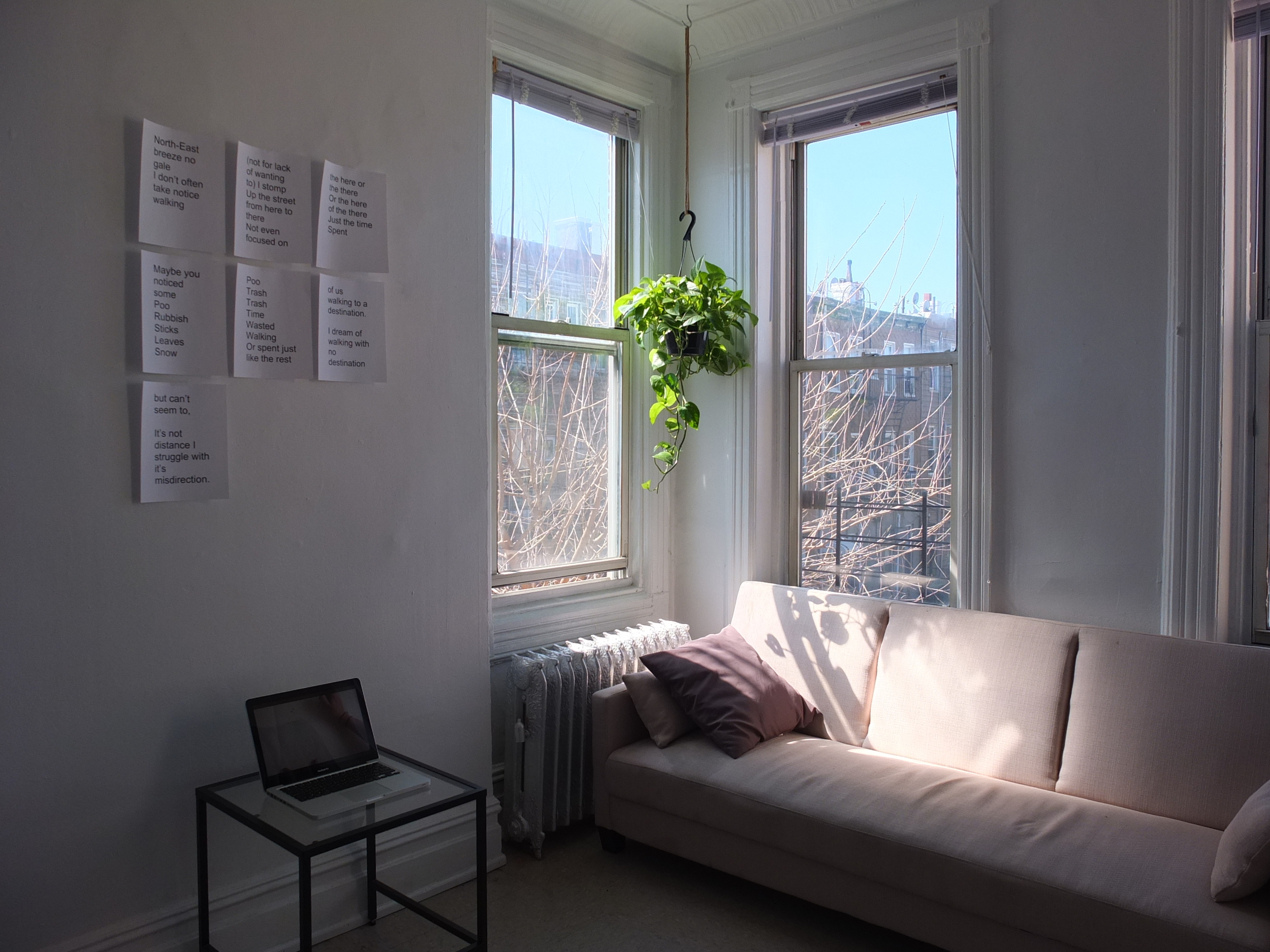 Winter Through a South Facing Window,    installation view, The Living Room Project, 2016.